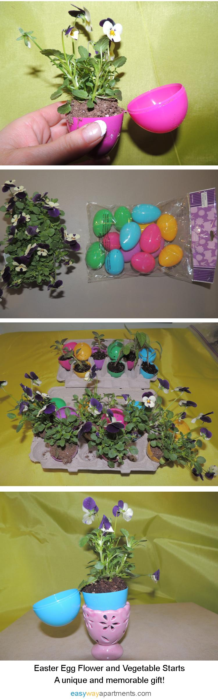 Easter Egg Flower or Vegetable Starts- The Perfect Gift! EasyWayApartments.com