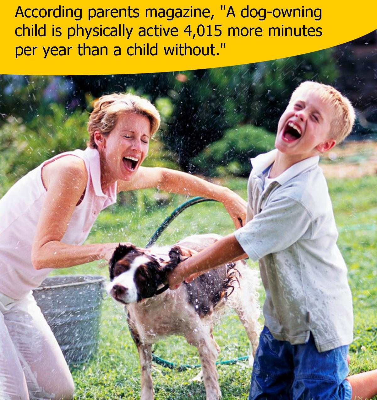 Dog Owners are More Active