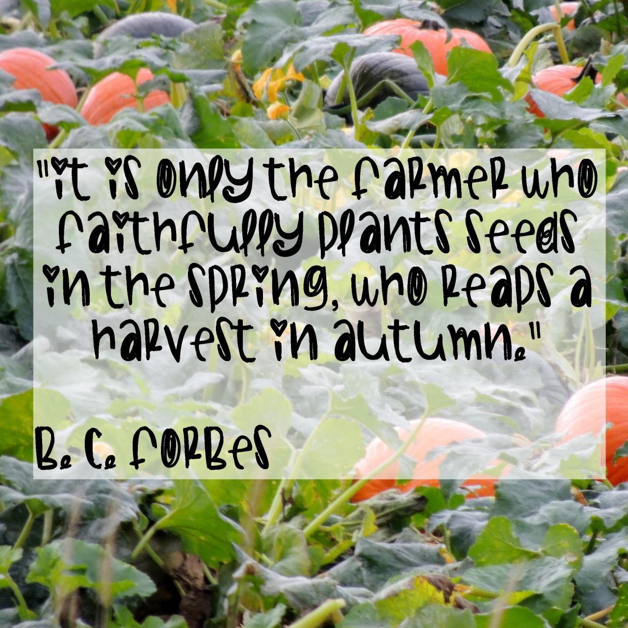 The farmer who plants gets #Pumpkins!