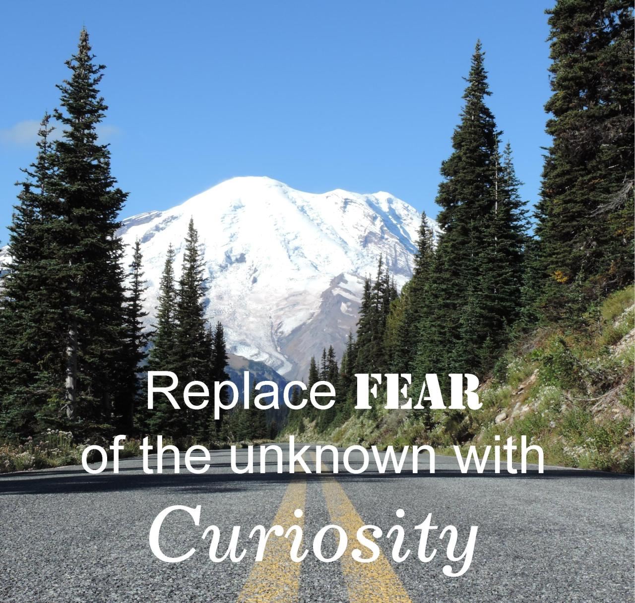 Replace #Fear with #Curiosity